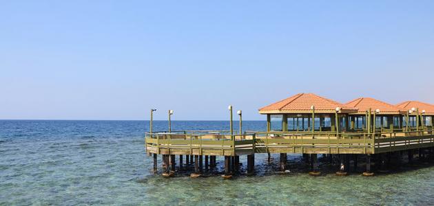 أفضل أماكن السياحة في جدة