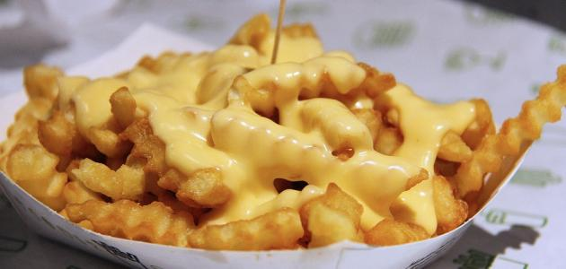 Modus operandi of cheese sauce, fried potatoes