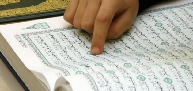 أحاديث عن فضل قراءة القرآن
