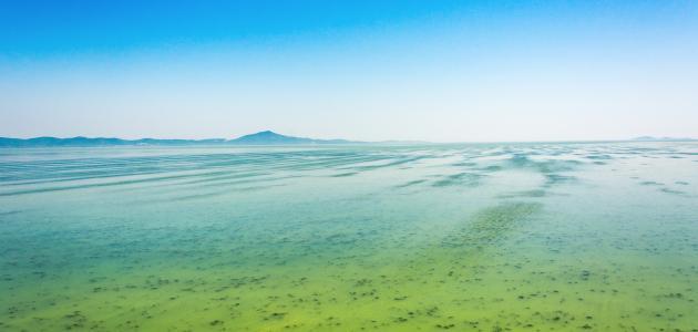 ما هي أسباب تلوث المياه