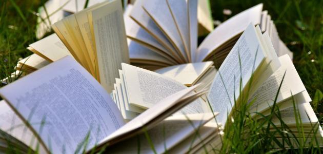 أجمل كتب دوستويفسكي