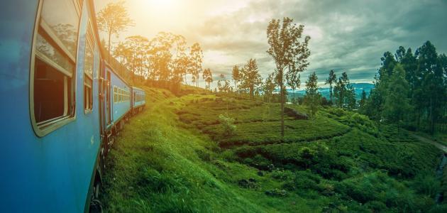أفضل أماكن السياحة في سريلانكا