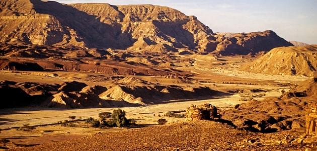 كم تبلغ مساحه سيناء