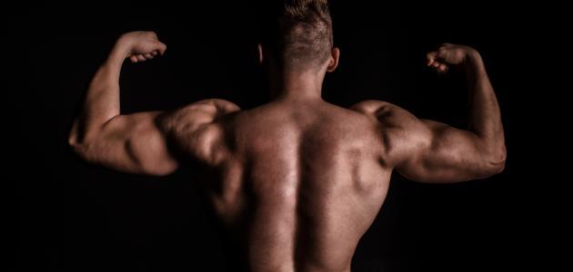 كم يحتاج لاعب كمال الأجسام من البروتين يومياً
