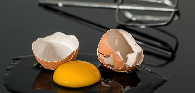 كم يحتوي البيض على بروتين