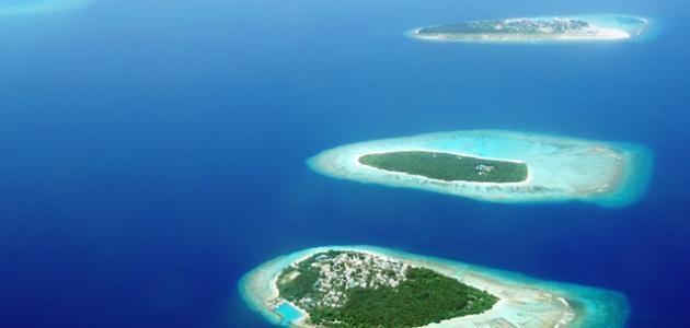ما هو عدد جزر الكناري
