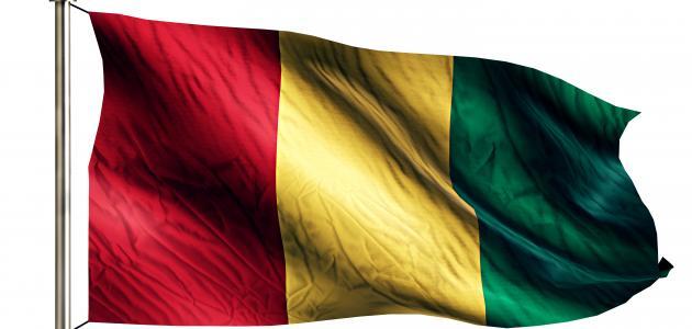 ما الديانة الرسمية في غينيا
