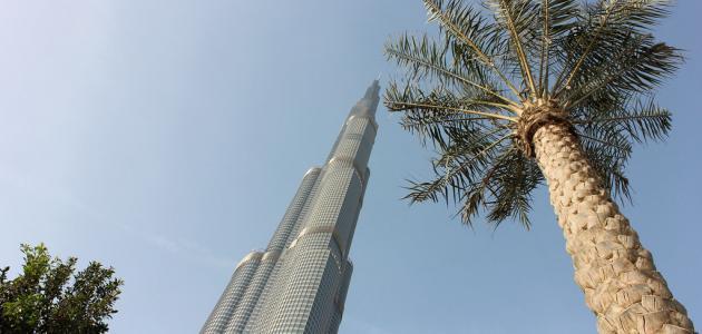 ما هو أطول مبنى في العالم