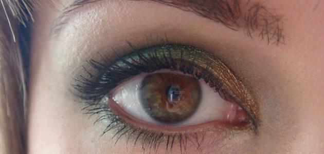 كيفية وضع الظلال على العين