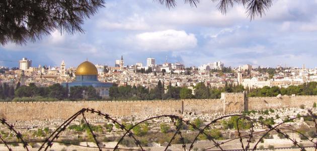 أكبر مدينة فلسطينية