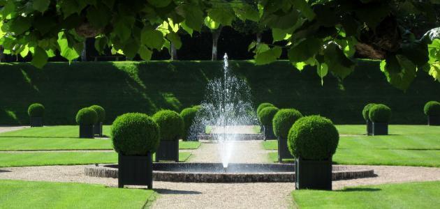 أجمل الحدائق