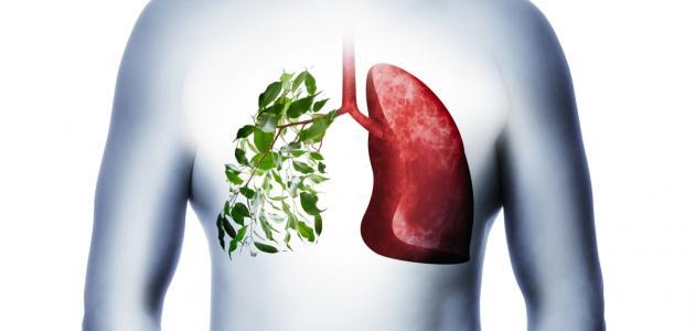 كيفية وقاية الجهاز التنفسي
