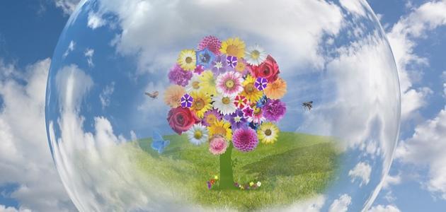 ما هو يوم الأرض العالمي