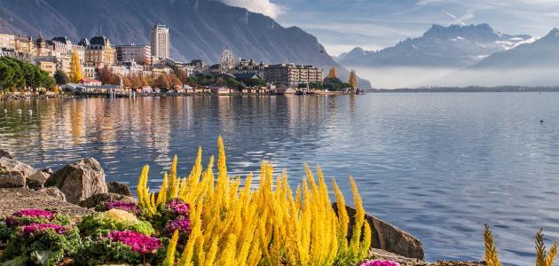 ما هي سويسرا