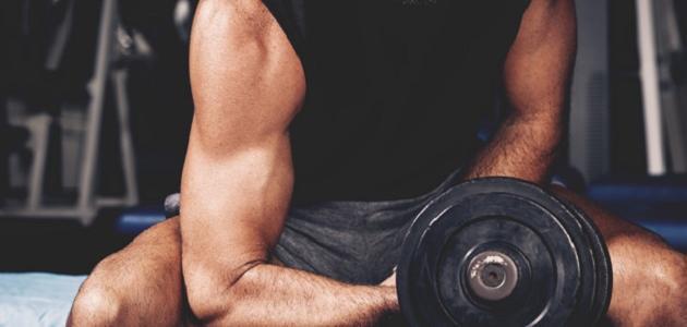 أهم الفيتامينات للعضلات