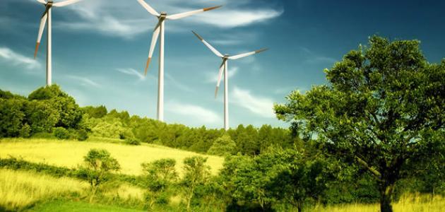 كيف نحمي البيئة