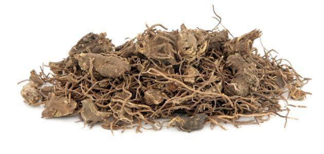 أعشاب تساعد في تنزيل الدورة الشهرية