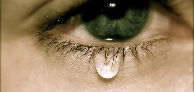 انواع الدموع وفوائدها
