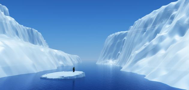 آثار الاحتباس الحراري على البيئة