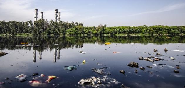 ما هي أضرار تلوث الماء