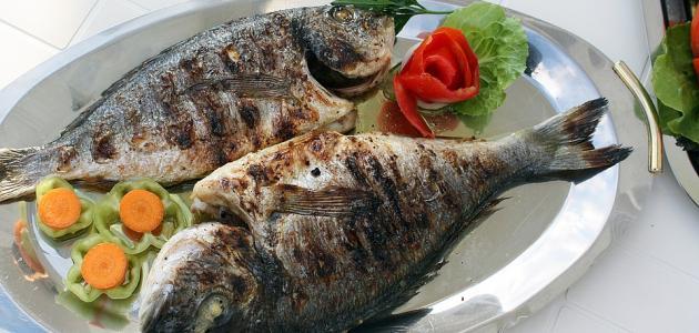 كيفية تحضير سمكة كبيرة في الفرن