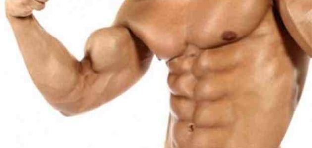 كيفية تكوين عضلات البطن