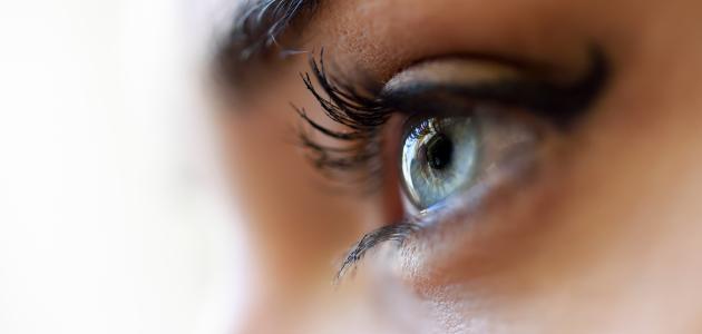 أجزاء العين التي تعطي اللون