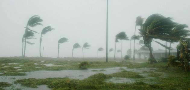 كيفية الحد من مخاطر الرياح