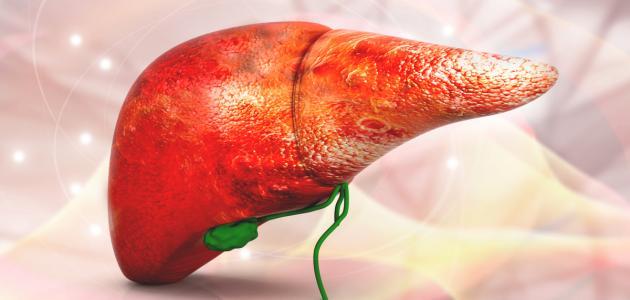 التضخم في الكبد