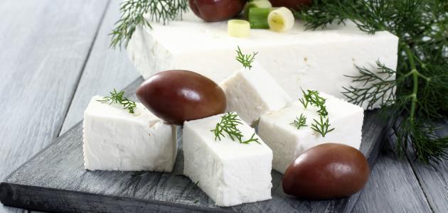 كيف أحفظ الجبنه البيضاء