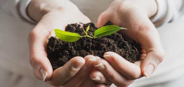 بحث حول كيفية المحافظة على التربة
