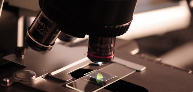 أجزاء المجهر الضوئي المركب ووظائفها