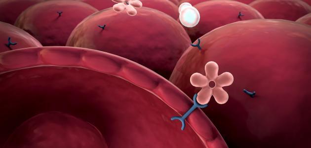 الخلايا الجذعية والسكري