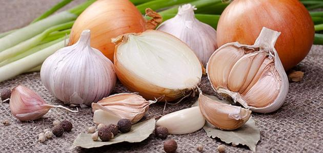 فوائد الثوم والبصل