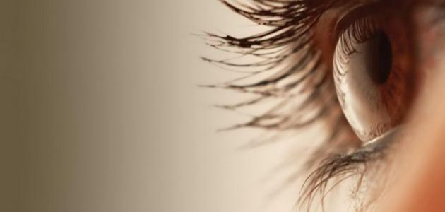 ما أسباب رفة العين