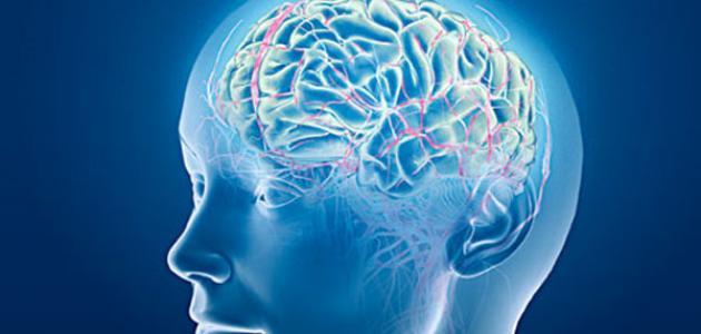 ما أسباب جلطة الدماغ