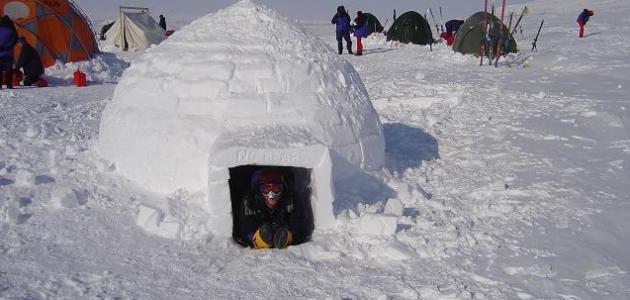 يعمل الثلج كعازل للحرارة