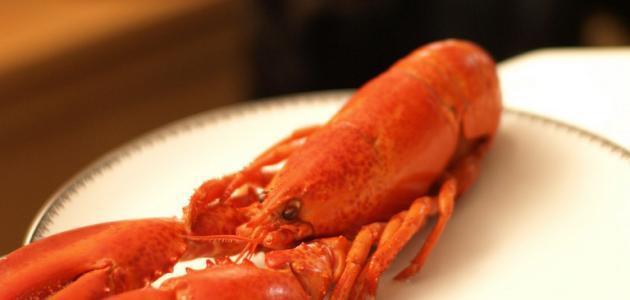 كيف يطبخ سرطان البحر