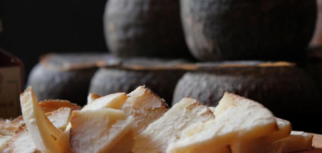 كيف تصنع الجبن