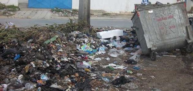 كيفية القضاء على التلوث