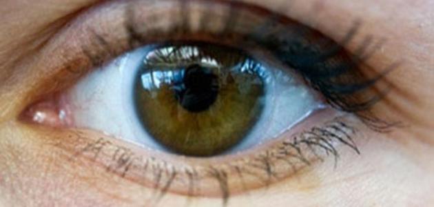 كيف نحافظ على العين