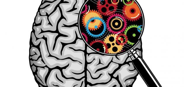 كيف يعمل العقل
