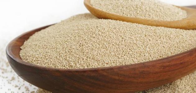 كيفية صناعة خميرة الخبز