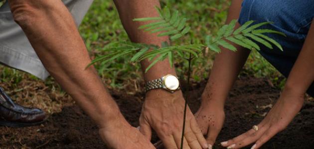 تعلم كيف تزرع