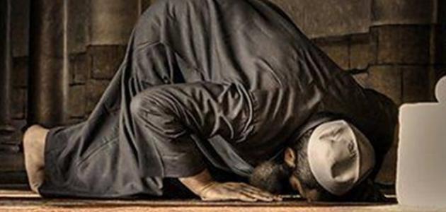 ما أهم عمل تؤديه في المسجد