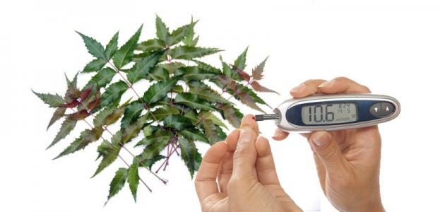 علاج السكر بالأعشاب