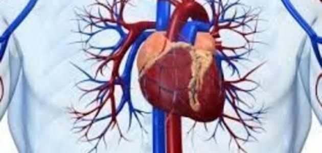 ما علاج مرض القلب