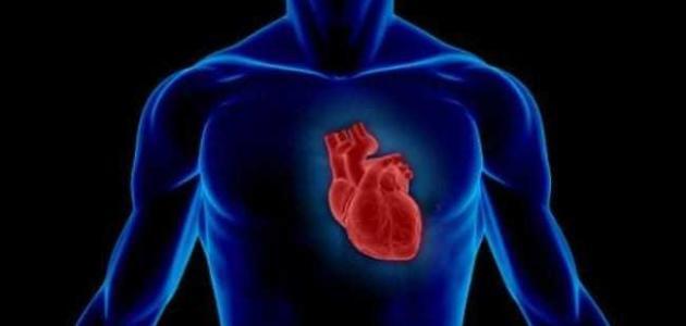 ما هو سبب زيادة ضربات القلب