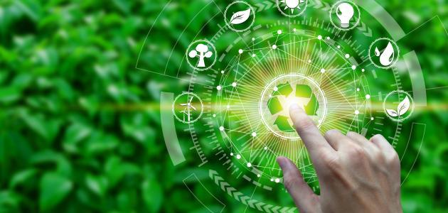 تعريف النظام البيئي