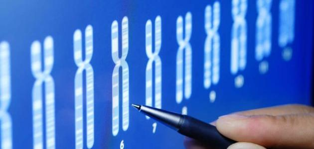 ما هو تحليل الكروموسومات